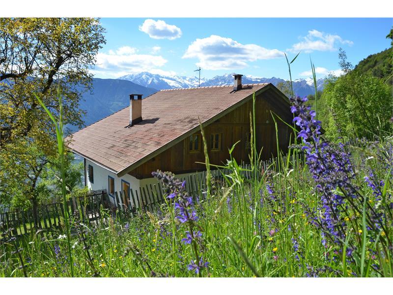 Urlaub in der Kohlstatt Hütte in Vöran, Südtirol