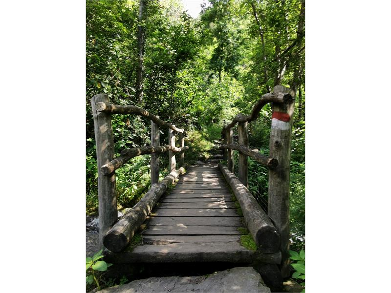 Ponte sul Salten