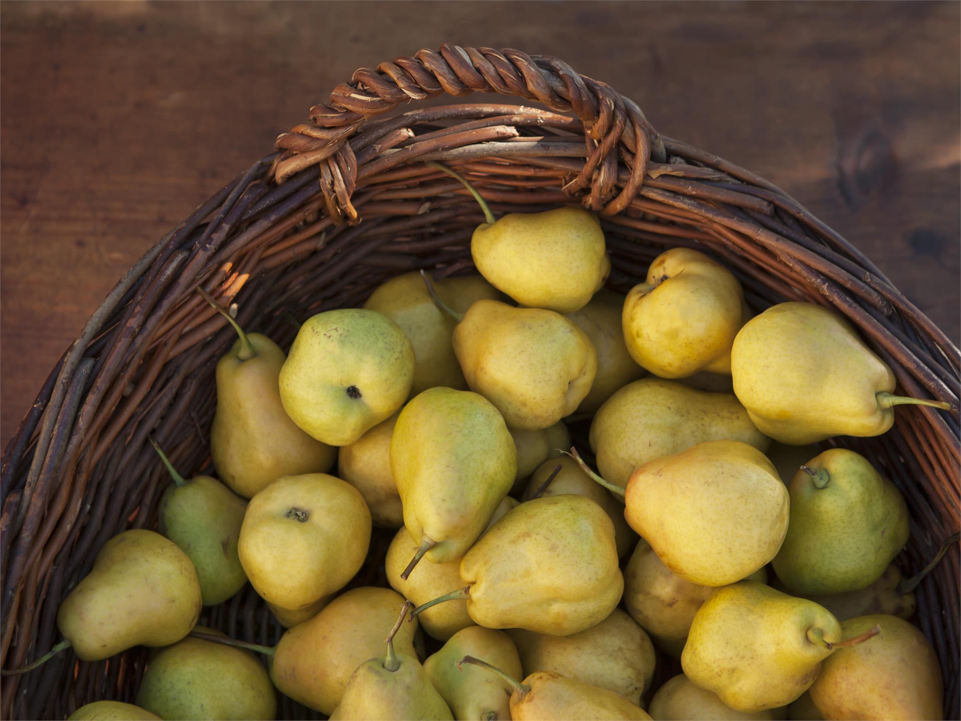 Giornate della pera Pala: Apertura delle giornate della pera Pala