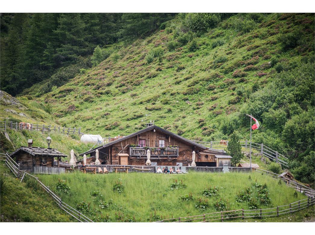 Malga Knutten Alm Rein in Taufers Riva di Tures