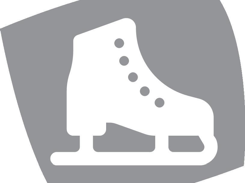 Ice Skating Rink in Casateia/Gasteig