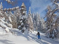 Flatschspitze ski tour