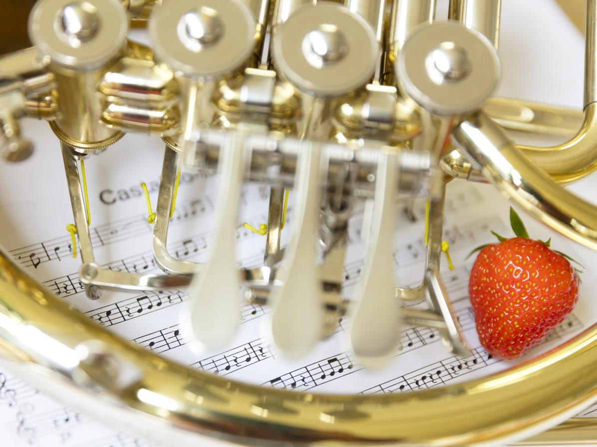 Concerto pasquale della banda musicale di Tarres