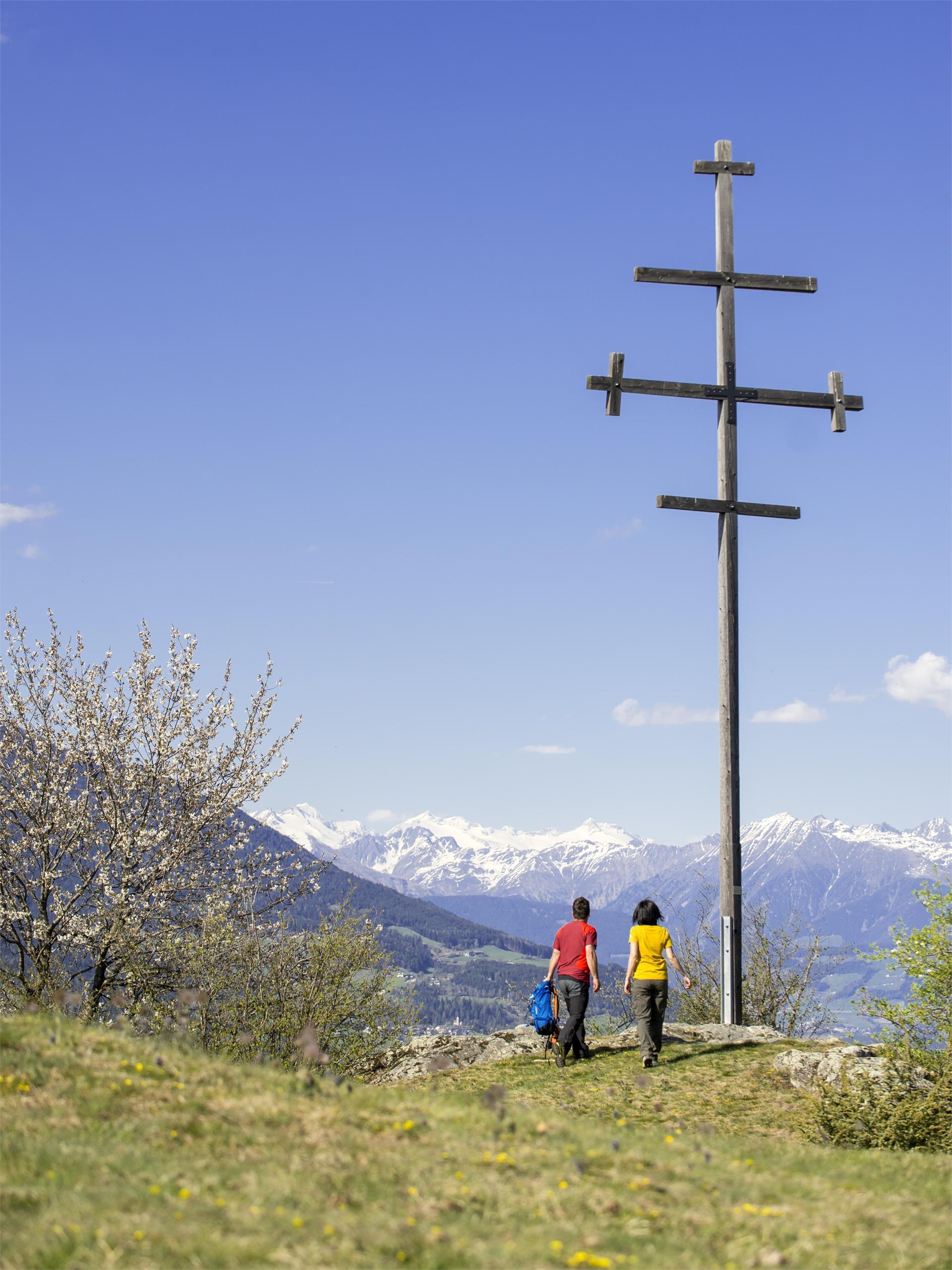 Wasserbühel Circuit trail