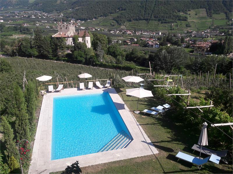 Pool 8 x 14 m