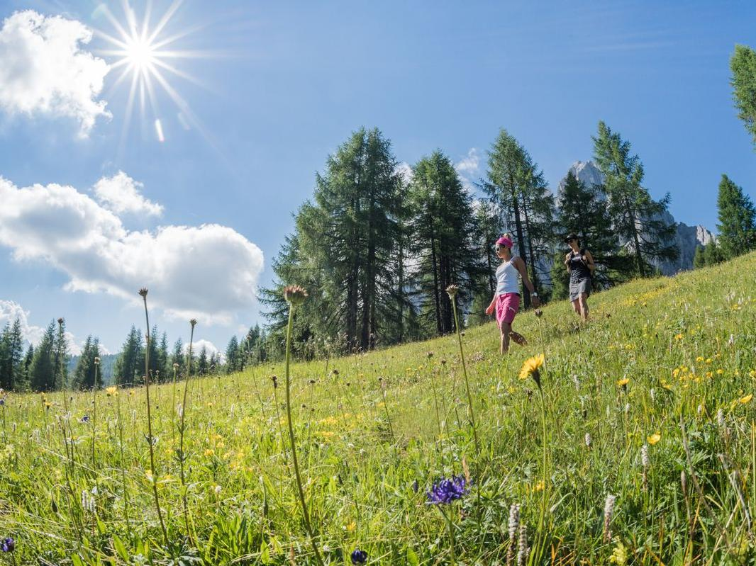 Escursione - Giro per i prati di monte casella di dentro (est)