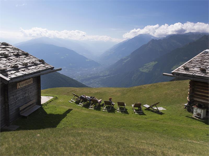 Assenhütte