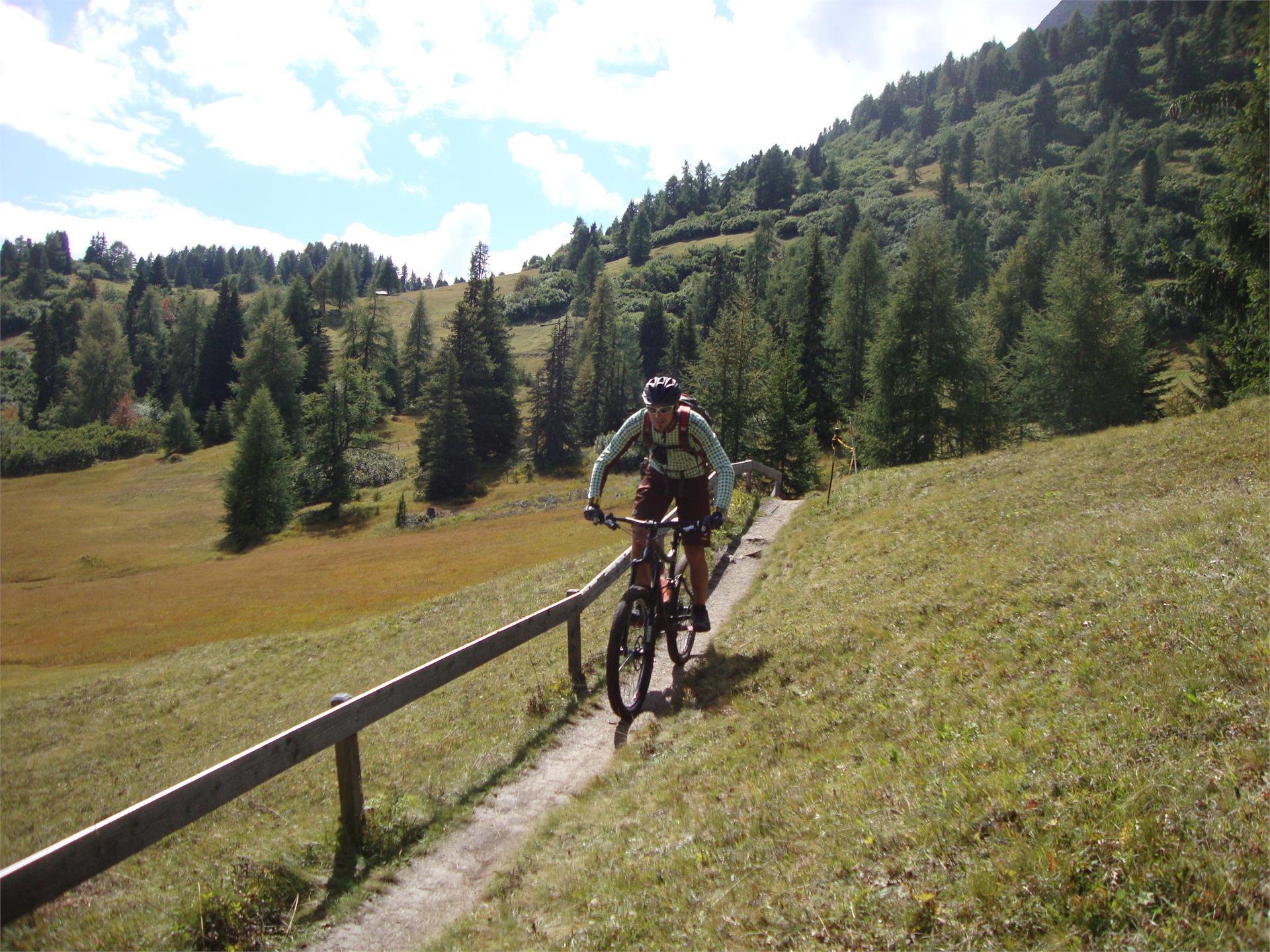 Mountainbiketour Grün-Schwarzsee