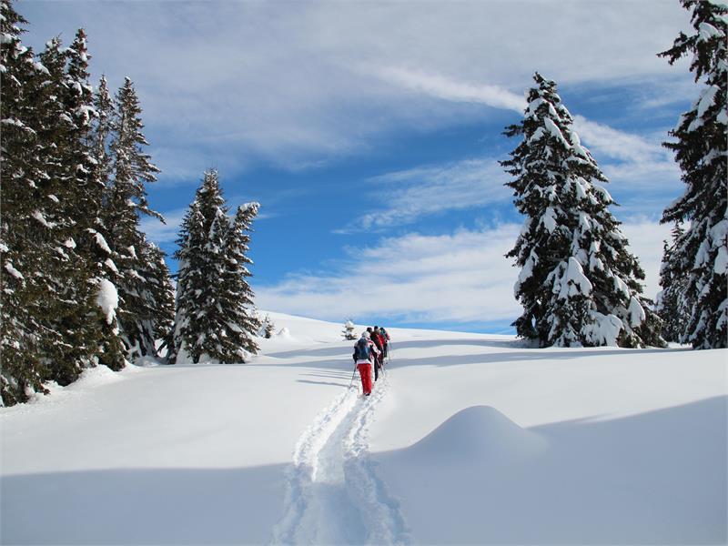 Schneeschuhwanderung zur Vöraner Alm