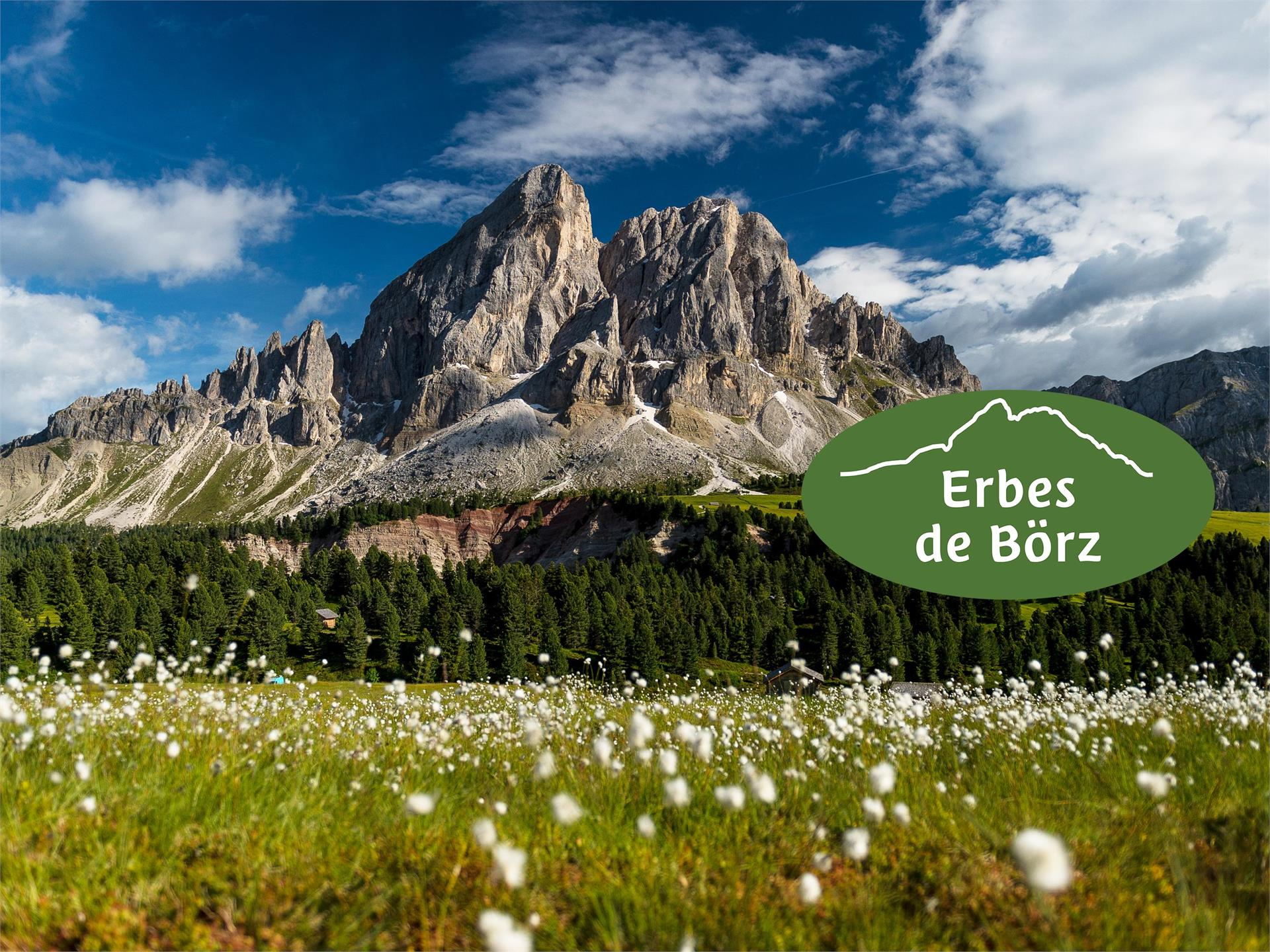Erbes de Börz: The week full of flavours and aromas of local herbs