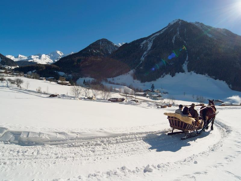 Pferdeschlittenfahrten Obergruberhof