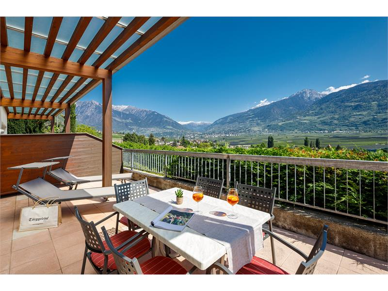 Panorama-Appartement- balcony