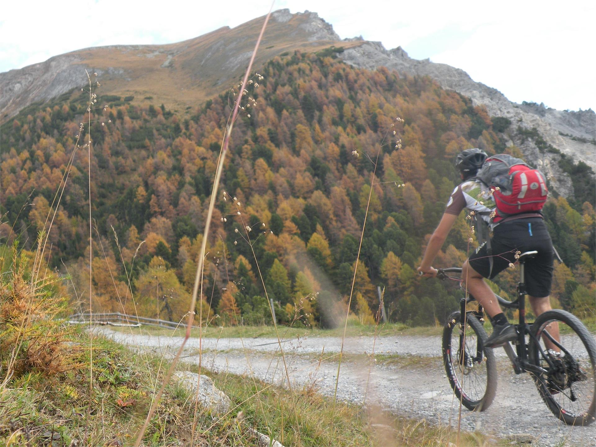Giro in mountainbike Malga Curon