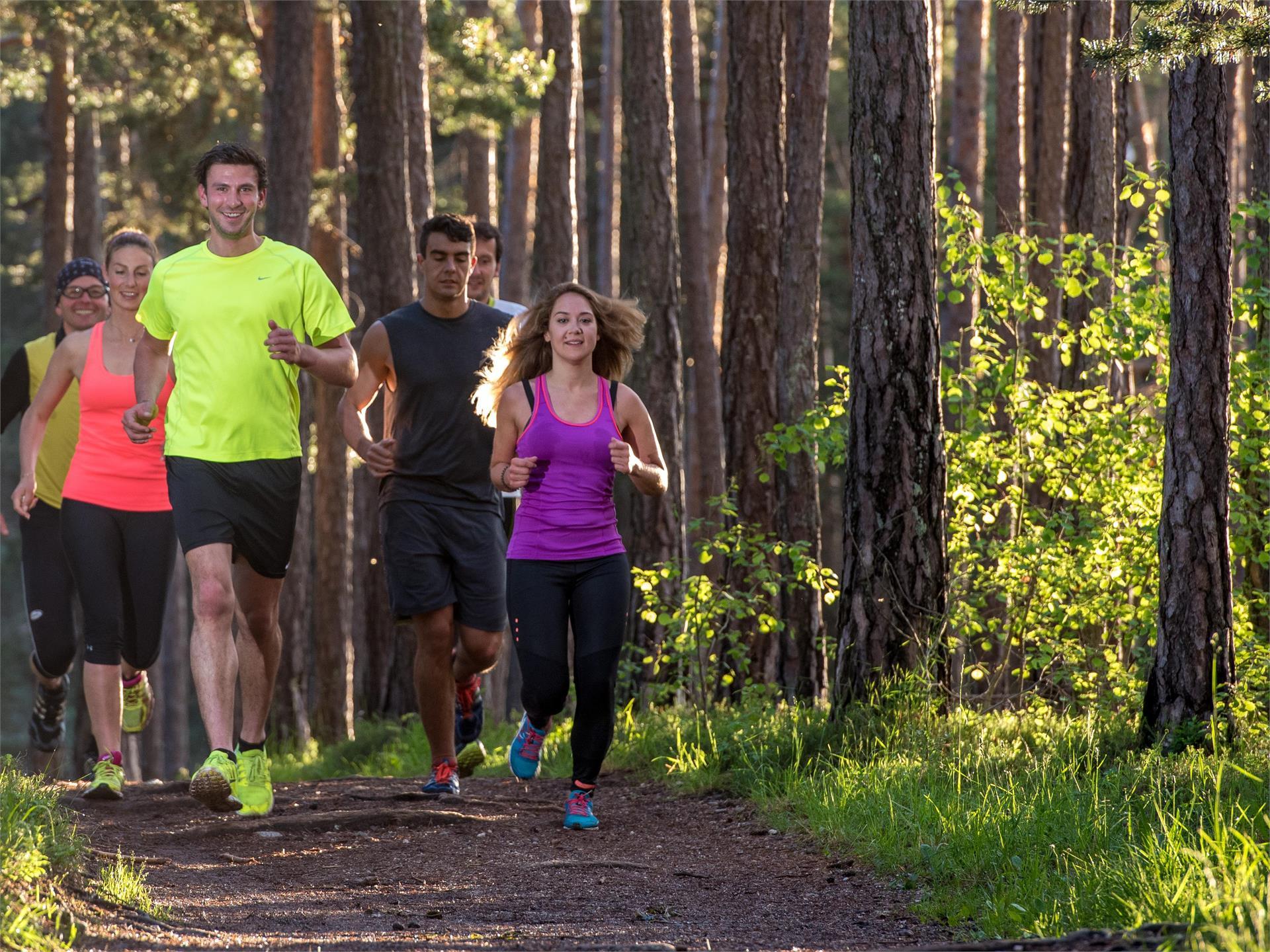 Südtirol Balance: Waldlauf - Trainingsmethoden und Laufuntergrund