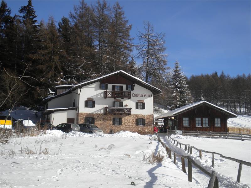 Leadner Alm in Vöran, Südtirol