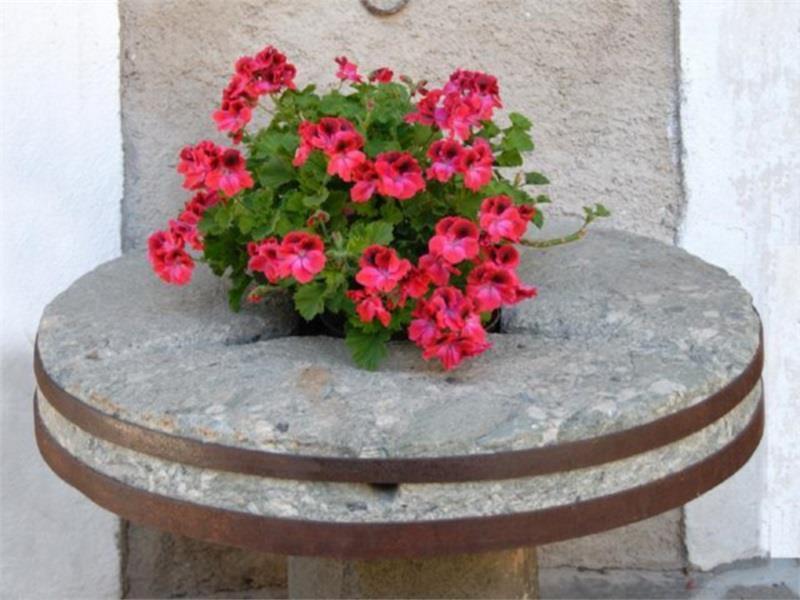 Frische Blumen vor dem Eingang