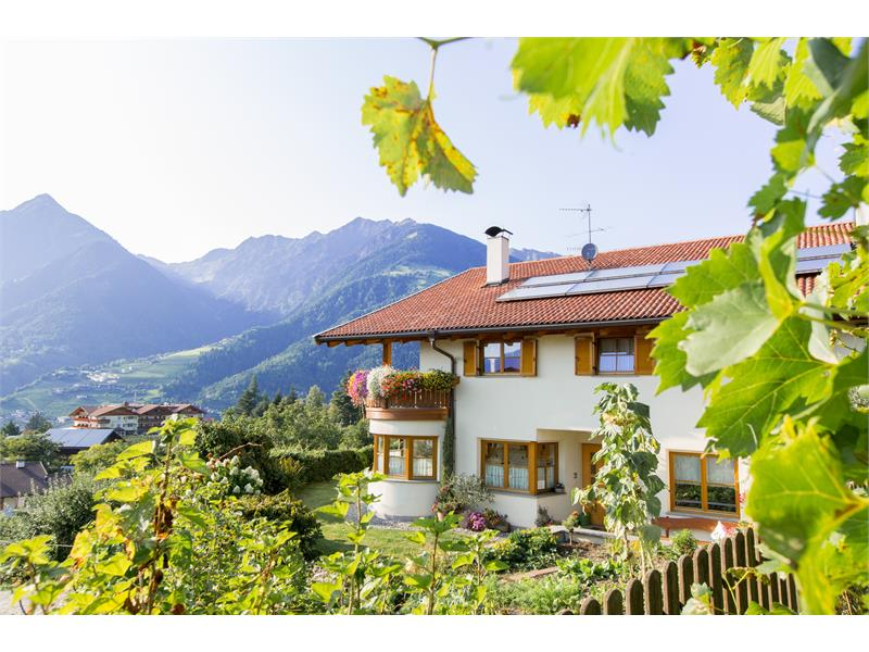 Ferienhaus Baumgartnerhof
