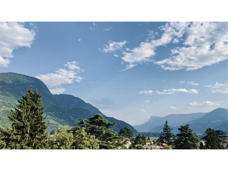 Apartsuite SINA Kathrein Deluxe | Panorama