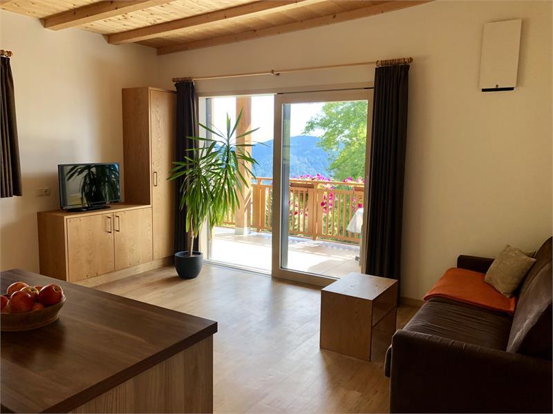 Wohnraum Wohnung Alpenrose