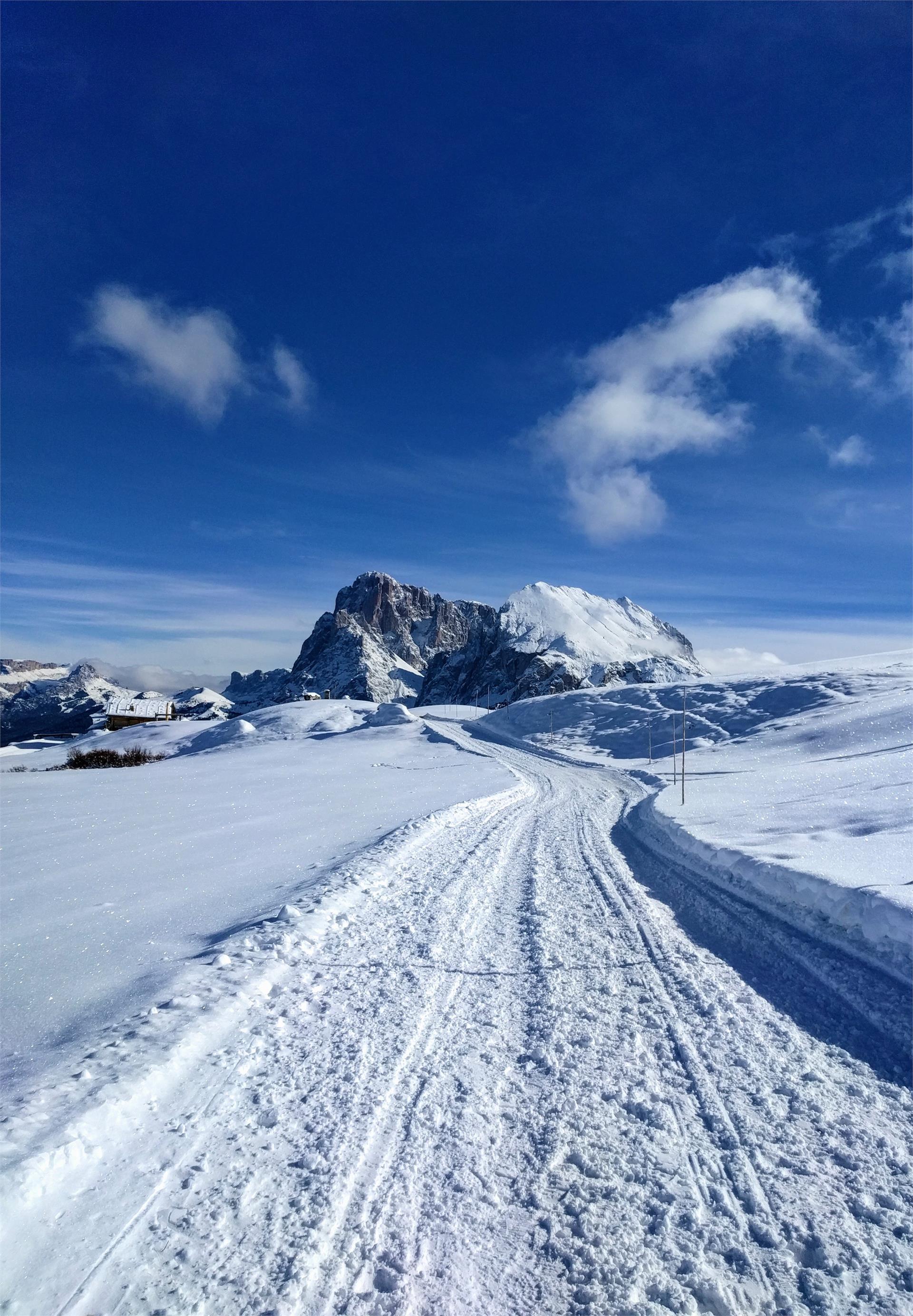 Winter Seiser Alm