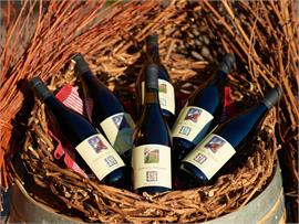Wine growers of Fiè - tradition at the foot of the Sciliar