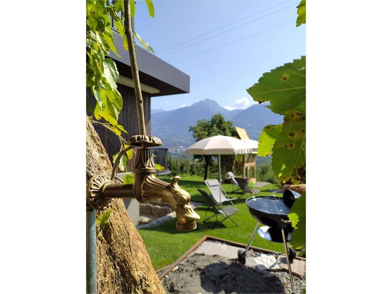 Garten 2 Drachenkopf