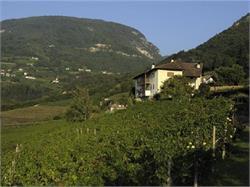 Cantina Brunnenhof