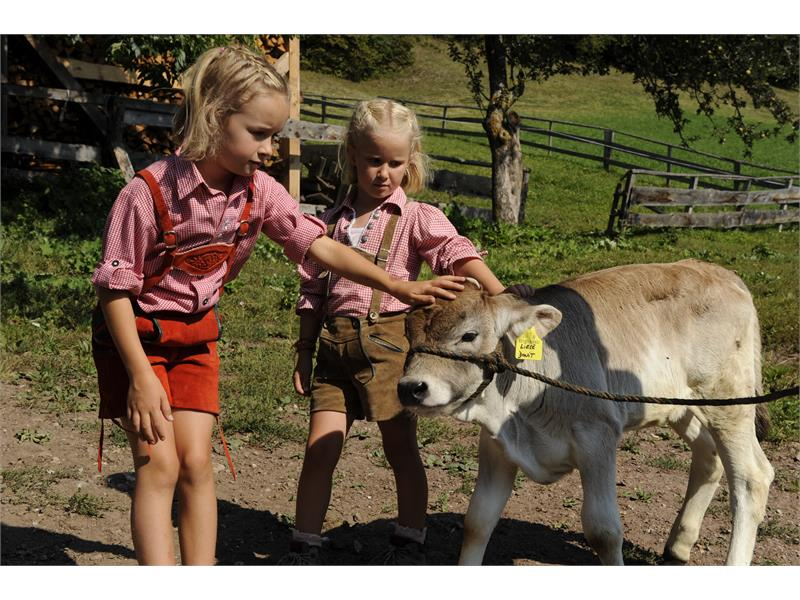 For the children the farm is a never-ending adventure
