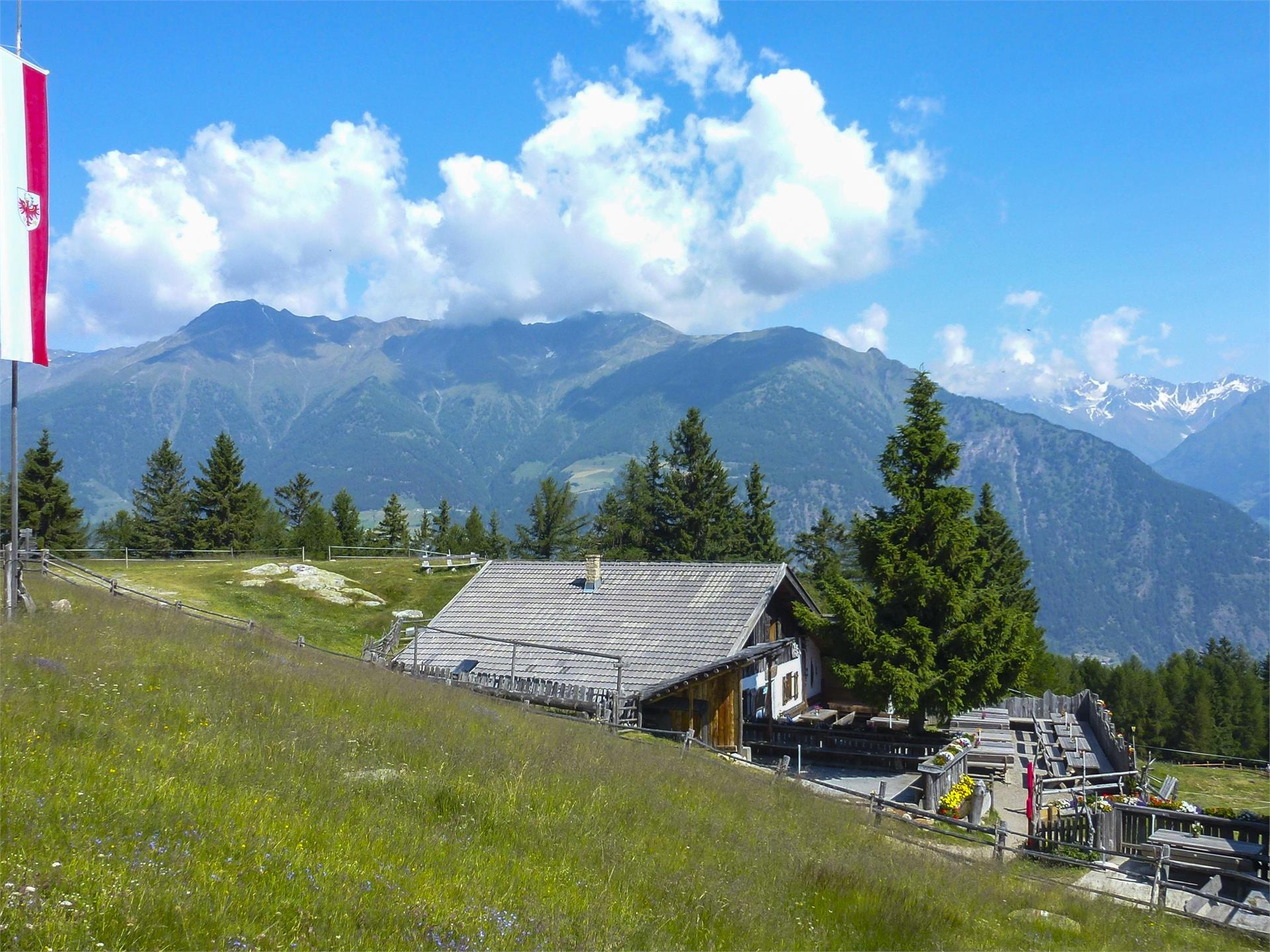 Mountain hut hike at Malga di Marzon