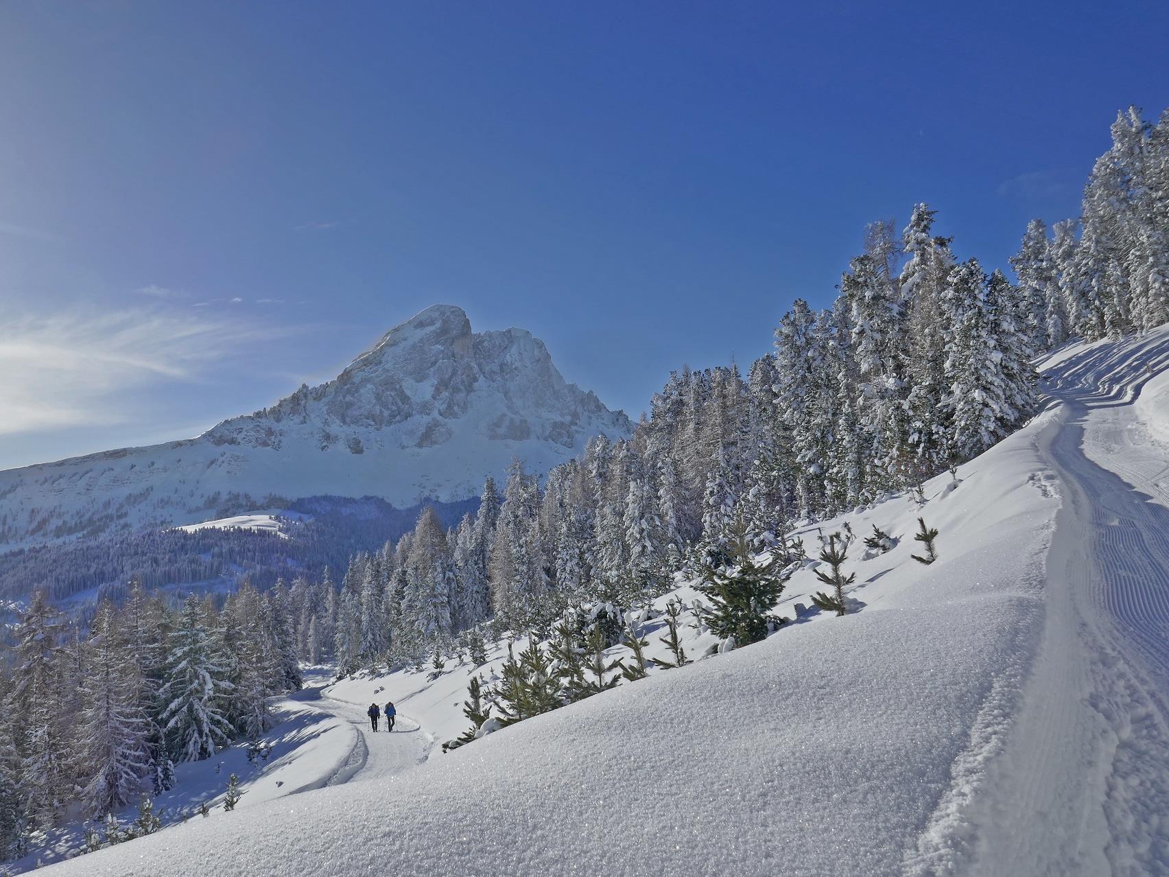 Leichte Schneeschuhwanderung am Fusse des Peitlerkofels