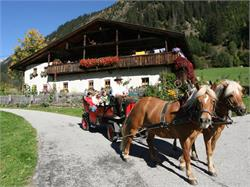 Horse riding at the Oberauerhof