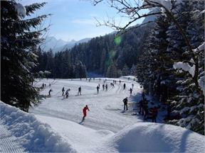 Langlaufloipe Forni di Sopra - Dolomites