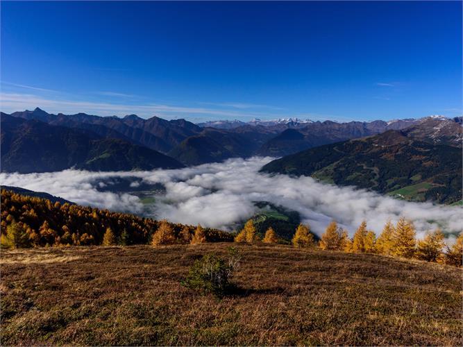 L'oro dell'autunno - escursione lungo l'Alta Via di Ridanna