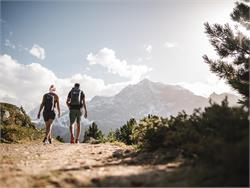 Geführte Erlebniswanderung im Nationalpark - Faszination Bergwelten