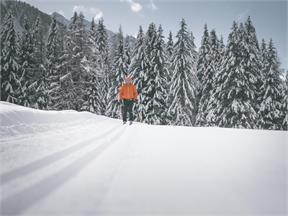 Loipe Biathlonzentrum Antholz