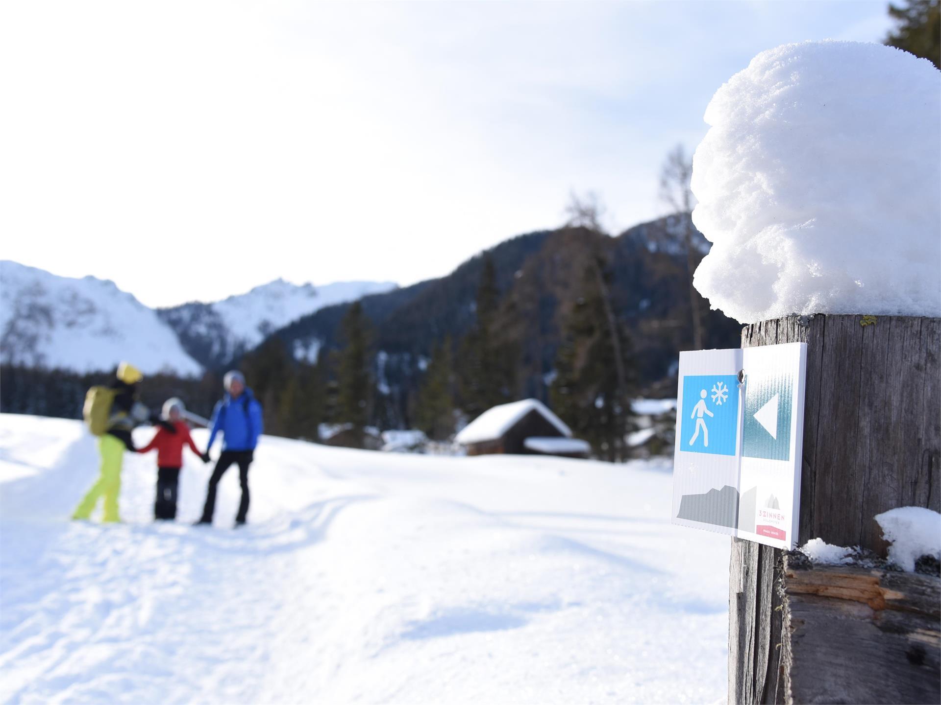 Winterwanderung Untergasse - Lärcha - Niederdorf
