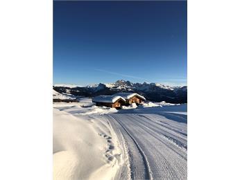 Alpine Star Hut