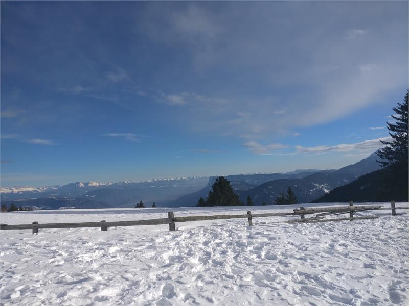 Apartments Schwarzlehen, Naturns, Winter, Weihnachtsmarkt Meran, Skifahren
