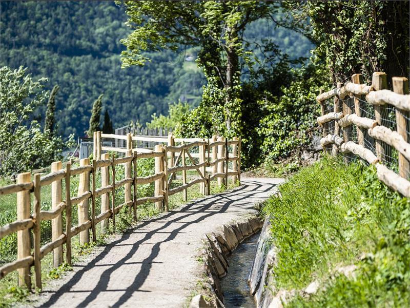 Da Parcines a Merano sul Waalweg di Algund/Lagundo - sentiero della roggia