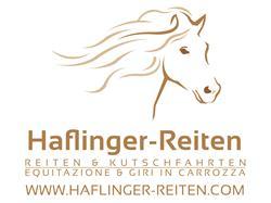Haflinger-Reiten