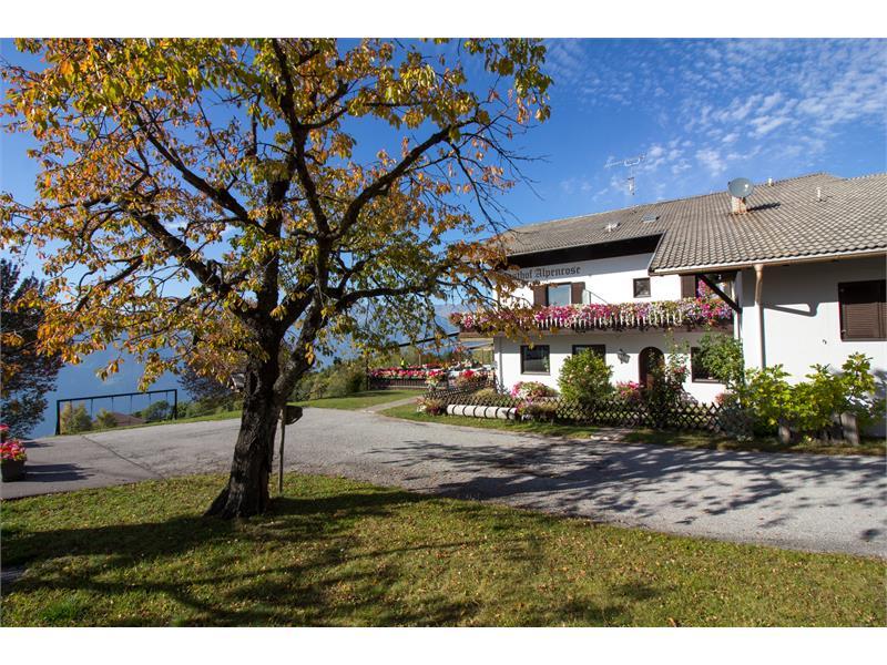 Rooms & restaurant - Alpenrose