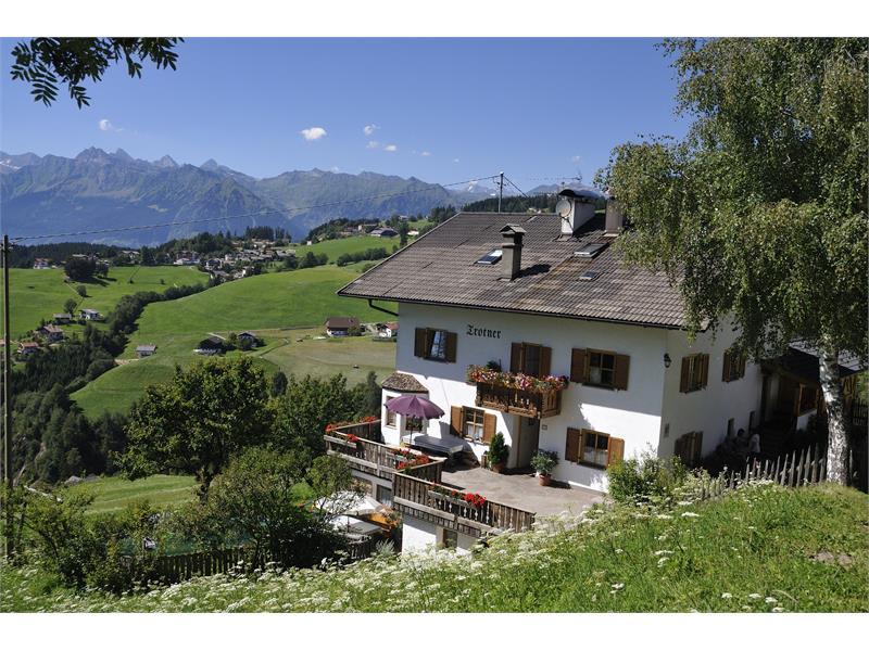 Farm Trotnerhof in Hafling/Avelengo