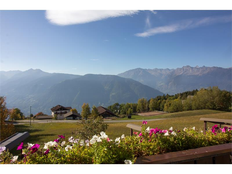 Holidays at the Guesthouse Alpenrose in Vöran/Verano, South Tyrol
