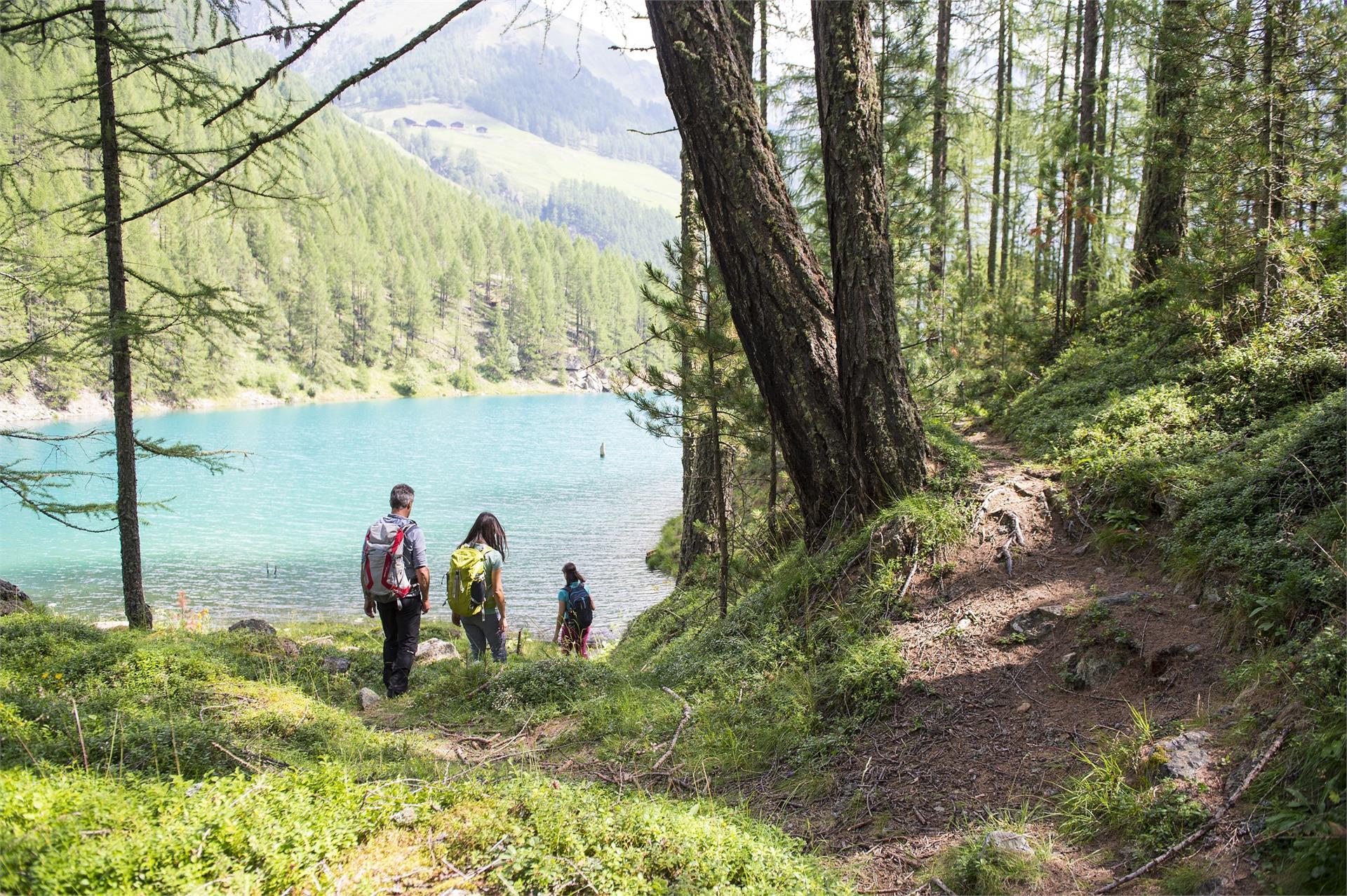 Escursione circolare al Lago Vernago
