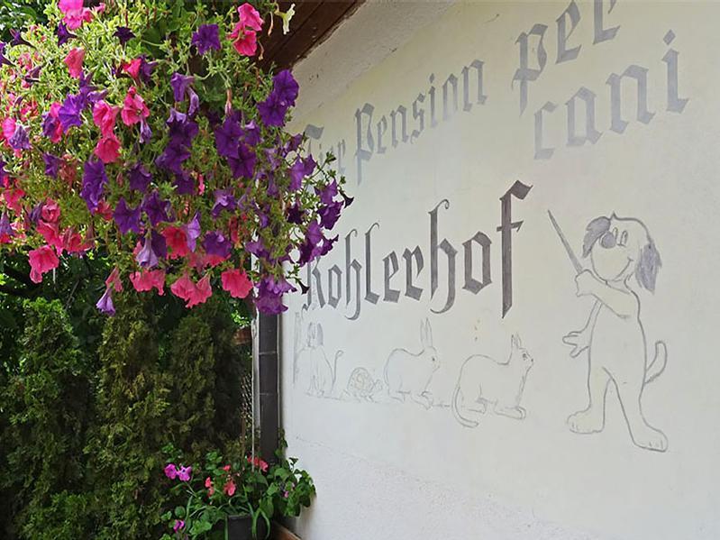 Tierpension Kohlerhof