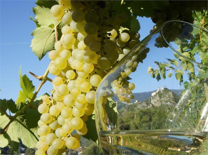 Train & Wine