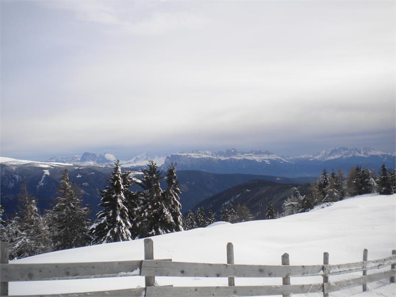 Ausblick auf die Dolomiten