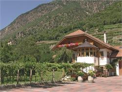 Escursione guidata lungo il sentiero del vino con degustazione-Maso Rebhof
