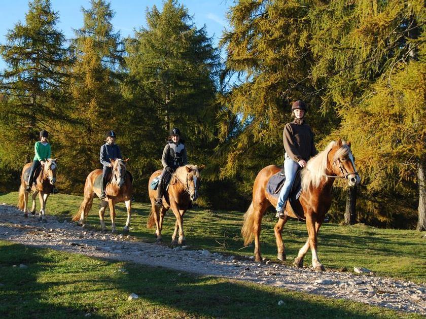 Horse riding at the Oberfahrerhof/maso Oberfahrerhof