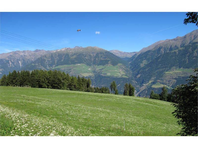Altopiano sul Monte Tramontana, inizio Holy Hansen Trail
